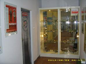 DSCI0548